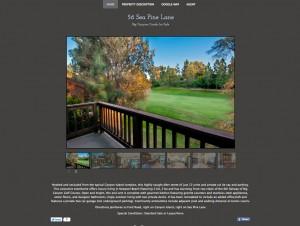 Affordable property websites for Realtors